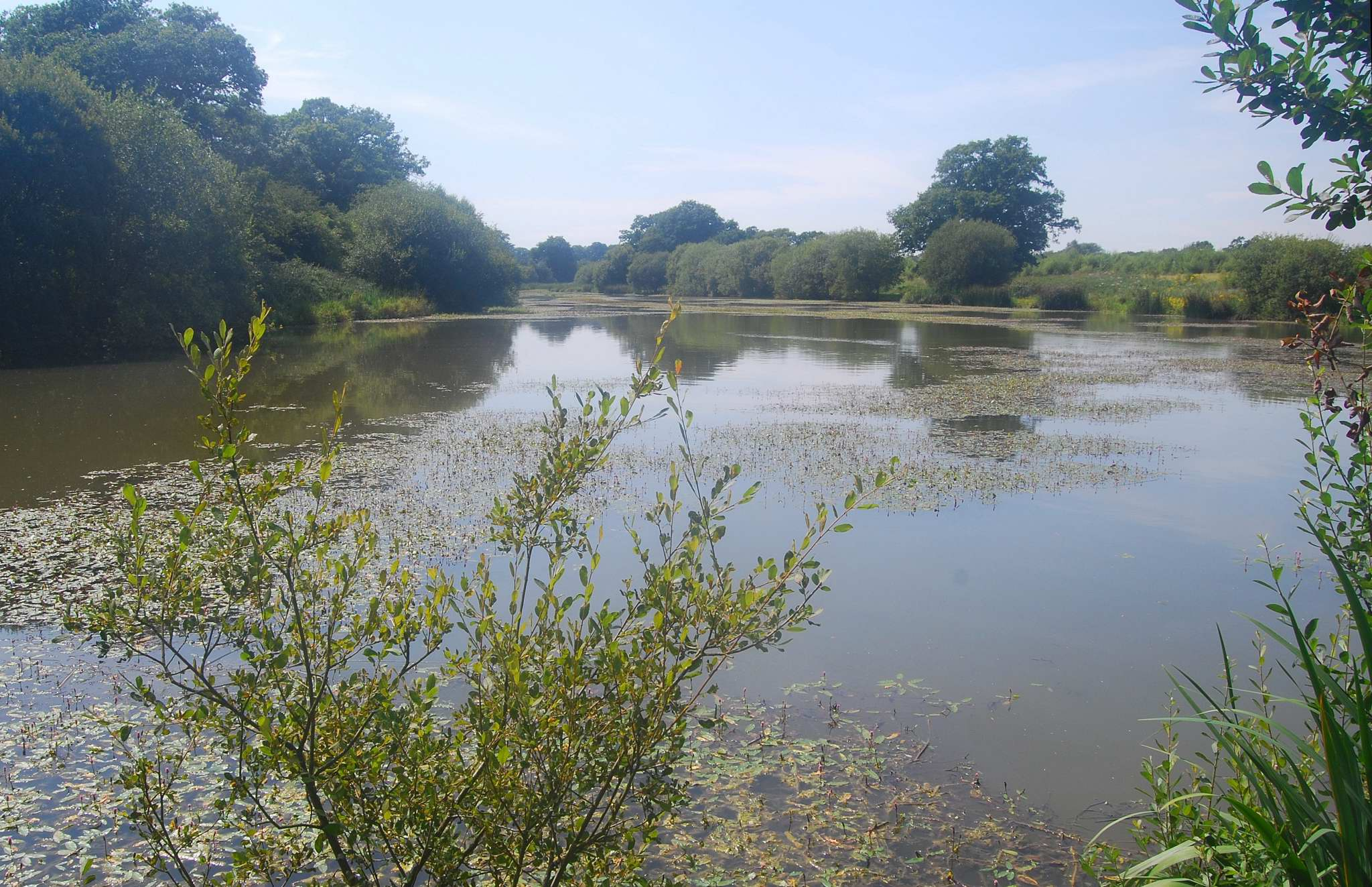 West sussex for Private fishing ponds near me